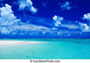 praia, com, céu azul, e, vibrante, oceânicos, cores
