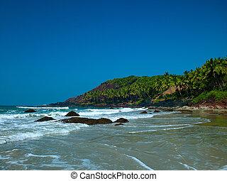 praia, com, coqueiros