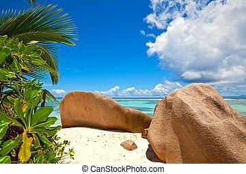 praia, com, um, grande, pedras