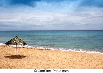praia, de, areia, com, chapéu sol