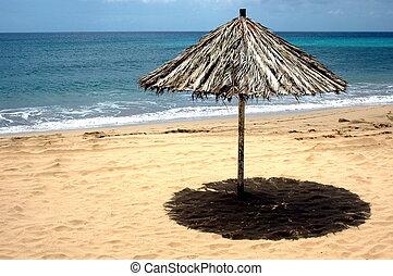 praia, de, areia, com, sol