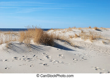 praia, de, mar báltico