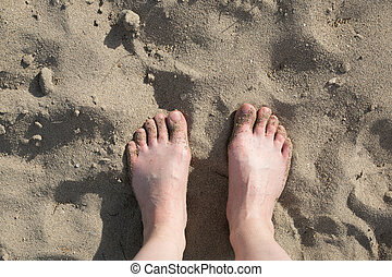 praia, dia, feliz