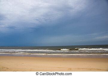 praia, e, a, oceânicos, em, dia ventoso