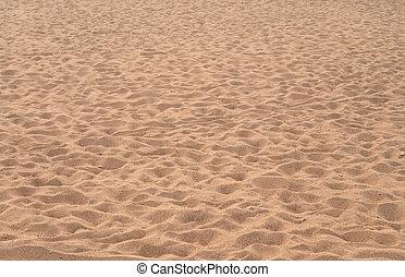 praia, em, a, summer.
