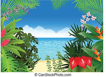 praia, fundo, tropicais