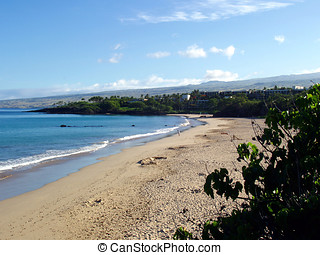 praia, hapuna, ilha havaí, grande