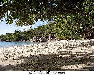 praia, ligado, a, ilha, de, praslin