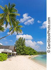 praia, ligado, ilha mahe, seychelles