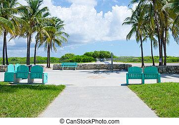 praia miami, coqueiros, vista