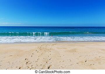 praia, oceânicos