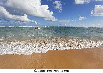 praia, onda