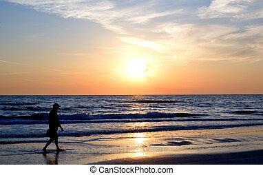 praia, pôr do sol, silueta