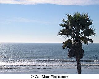 praia, pacífico