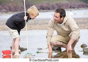 praia, pai, pesca, filho