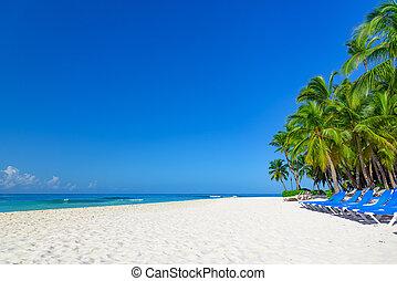 praia palma, longue, chaise