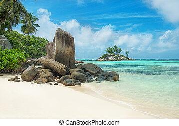 praia tropical, anse, royale, em, ilha, mahe, seychelles