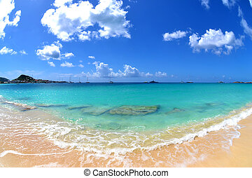 praia tropical, bonito