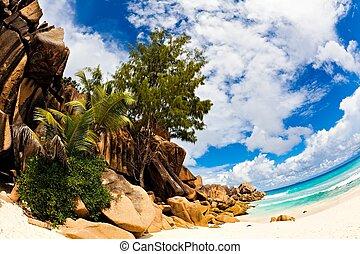 praia tropical, com, um, enorme, pedras