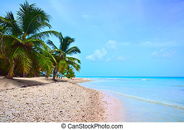 praia tropical, de, a, mar do caribe