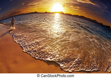 praia tropical, filipinas, tiro, fisheye