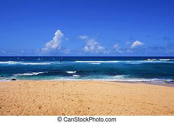 praia tropical, havaí