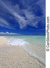 praia, verão, deslumbrante