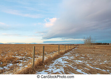 Praire Fence Landscape in Winter
