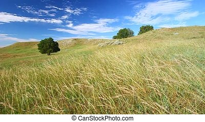 Prairie Breeze South Dakota - Prairie hillside under a...
