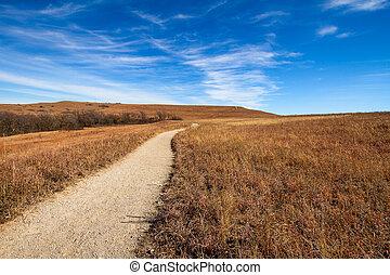 prairie, chemin