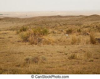 Prairie - Endless prairie at Pawnee National Grassland in ...