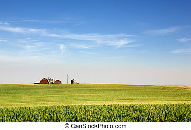Prairie Farmland - A landscape with wheat and a farm on the...