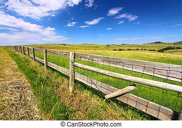 Prairie Fenceline South Dakota
