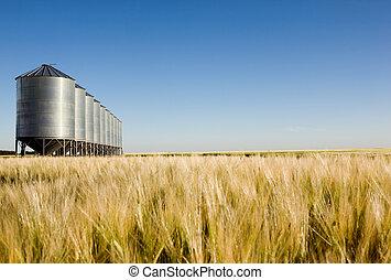 Prairie Harvest Landscape
