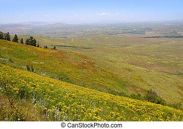 Prairie lands - prairie landscape near bison range in...