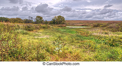 Prairie landscape - A rural landscape of prairie grassland ...