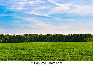 prairie, landscape, en, hemel