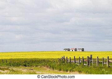 Prairie Landscape - Fence Line - Prairie landscape with old ...