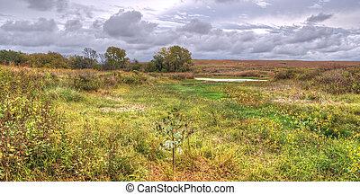 Prairie landscape - A rural landscape of prairie grassland...
