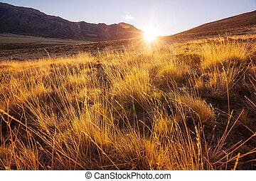 Prairie landscapes in Utah, USA