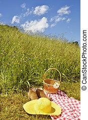 Prairie on a sunny summer day