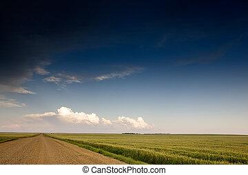prairie, orage, paysage