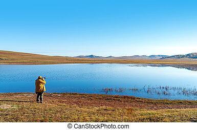 prairie, paysage automne