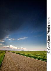 prairie, paysage