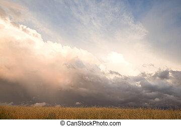 prairie, pleuvoir orage