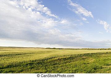 Prairie Sky Landscape - Prairie Lanscape with a vivid sky