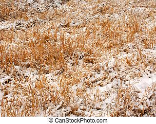 Prairie Snowfall Background