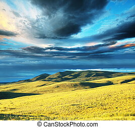 Prairie - prairie