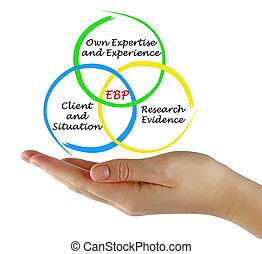 praktyka, dokumentowany, jawność, (ebp)