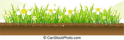 pramen, květiny, dále, ta, louka